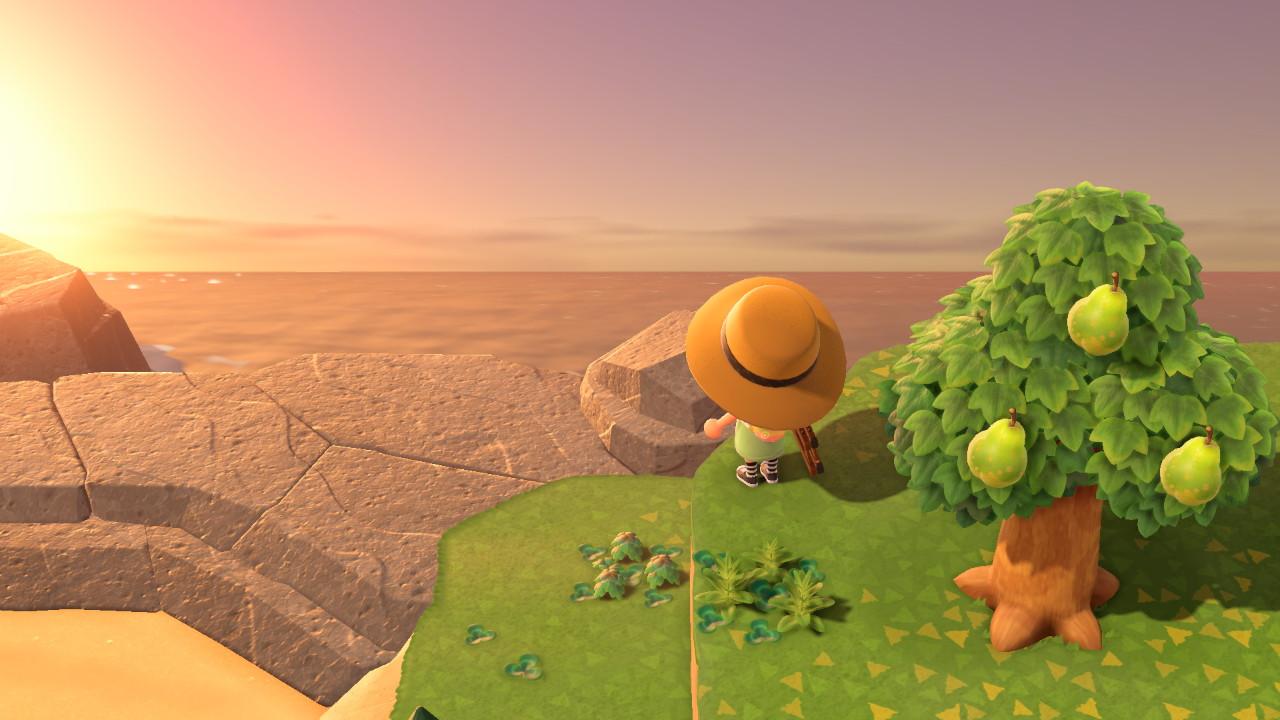 Animal Crossing Zachód słońca